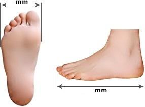 מידות נעליים